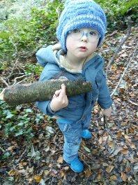 Domans Wood The Path